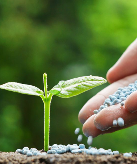 WATER SOLUBLE SPECIAL FERTILIZERS