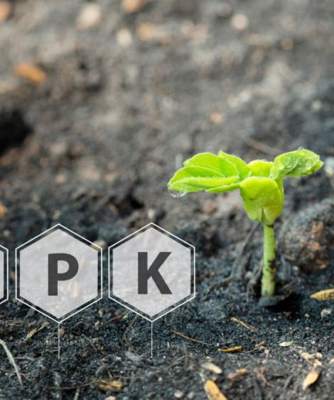 Liquid NPK Fertilizers